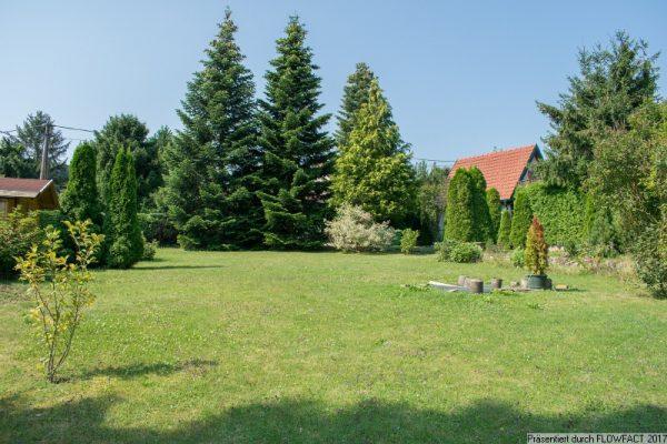 Baugrund – sonnig und eben in Breitenfurt Ost