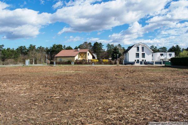 Zentrale und ruhige Lage in Deutsch Wagram – Bauplatz 1